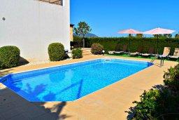 Бассейн. Кипр, Лачи : Прекрасная вилла с панорамным видом на море, с 3-мя спальнями, с бассейном, приватным двориком с патио и барбекю