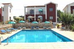 Бассейн. Кипр, Катикас : Прекрасная квартира с 2 спальнями для 5-х гостей в комплексе с бассейном и садом