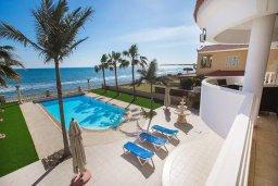 Территория. Кипр, Менеу : Шикарная вилла с прекрасным видом на море, с 4-мя спальнями, с большим бассейном, зелёной территорией, патио и барбекю