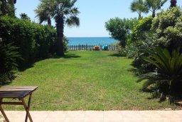 Территория. Кипр, Менеу : Прекрасная пляжная вилла с зеленым двориком с барбекю, 3 спальни, 2 ванные комнаты, парковка, Wi-Fi