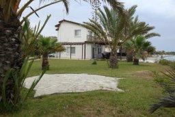 Территория. Кипр, Менеу : Прекрасная пляжная вилла с зеленым двориком и большой террасой с видом на море, 3 спальни, парковка, Wi-Fi