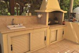 Территория. Кипр, Декелия - Ороклини : Роскошная пляжная вилла в Ларнаке с бассейном и двориком с барбекю, 5 спален, 5 ванных комнат, парковка, Wi-Fi