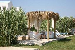 Зона отдыха у бассейна. Кипр, Ионион - Айя Текла : Прекрасная вилла с бассейном напротив пляжа и с видом на море, 3 спальни, 2 ванные комнаты, парковка, Wi-Fi