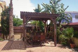 Территория. Кипр, Ионион - Айя Текла : Прекрасная вилла с зеленым двориком недалеко от пляжа, 3 спальни, терраса для загара, парковка, беседка, Wi-Fi