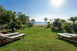 Территория. Кипр, Ионион - Айя Текла : Роскошная вилла с бассейном, патио и зеленой лужайкой, 50 метров до пляжа, 3 спальни, 3 ванные комнаты, барбекю, парковка, Wi-Fi