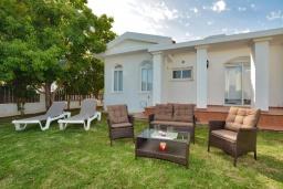 Зелёный сад. Кипр, Ионион - Айя Текла : Прекрасная вилла с большим бассейном и зеленым двориком в 100 метрах от пляжа, 4 спальни, 2 ванные комнаты, барбекю, парковка, Wi-Fi