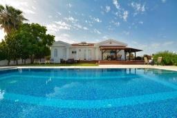 Парковка. Кипр, Ионион - Айя Текла : Прекрасная вилла с большим бассейном и зеленым двориком в 100 метрах от пляжа, 4 спальни, 2 ванные комнаты, барбекю, парковка, Wi-Fi
