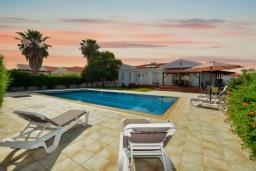Бассейн. Кипр, Ионион - Айя Текла : Прекрасная вилла с большим бассейном и зеленым двориком в 100 метрах от пляжа, 4 спальни, 2 ванные комнаты, барбекю, парковка, Wi-Fi