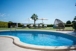 Бассейн. Кипр, Корал Бэй : Прекрасная вилла на побережье с 3-мя спальнями, с бассейном с подогревом и зеленой лужайкой с патио и барбекю