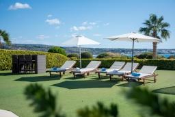 Территория. Кипр, Корал Бэй : Прекрасная вилла на побережье с 3-мя спальнями, с бассейном с подогревом и зеленой лужайкой с патио и барбекю