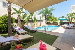 Бассейн. Кипр, Пернера : Великолепная вилла с 3-мя спальнями, с бассейном, патио и барбекю,  расположена в самом центре Пернеры