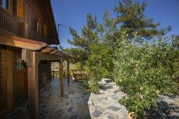 Терраса. Кипр, Троодос : Комплекс из трех деревянных коттеджей с большой зеленой территорией, с 3-мя гостиными с кухнями, 8 спальнями, 4 ванными комнатами, барбекю и потрясающим видом на горы и деревню Spilia