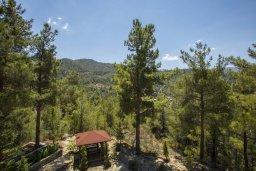 Территория. Кипр, Троодос : Очаровательный двухэтажный деревянный коттедж с большой зелёной территорией, 3-мя спальнями, тенистой террасой, барбекю и потрясающим видом на горы и деревню Spilia