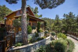 Фасад дома. Кипр, Троодос : Очаровательный двухэтажный деревянный коттедж с большой зелёной территорией, 3-мя спальнями, тенистой террасой, барбекю и потрясающим видом на горы и деревню Spilia