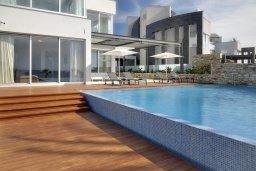 Бассейн. Кипр, Аммос - Лимнария Бич : Элегантная вилла на побережье с панорамным видом на Средиземное море, с 6-спальнями, пейзажным бассейном, сауной, солнечной террасой на крыше с джакузи, расположена в 50 метрах от уединенной песчаной бухты