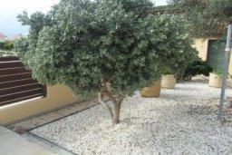 Территория. Кипр, Писсури : Великолепная вилла с бассейном и видом на море, 3 спальни, 2 ванные комнаты, дворик с барбекю, парковка, Wi-Fi
