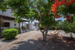 Территория. Кипр, Коннос Бэй : Великолепная семейная вилла в Кипрском стиле с красивым зелёным садом, с видом на Средиземное море, с 3-мя спальнями и приватным двориком с патио