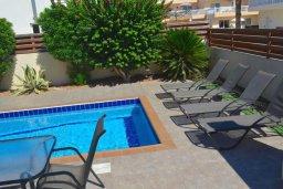 Бассейн. Кипр, Нисси Бич : Очаровательная вилла с 2-мя спальнями, бассейном, солнечной террасой с патио, расположена недалеко от знаменитого пляжа Nissi Beach
