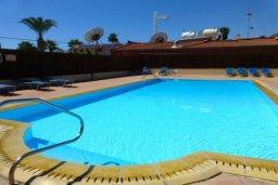 Бассейн. Кипр, Центр Айя Напы : Апартамент в комплексе с бассейном, с гостиной, отдельной спальней и террасой