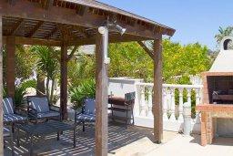 Территория. Кипр, Нисси Бич : Роскошная вилла с 6-ю спальнями, 6-ю ванными комнатами, большим бассейном, зелёным садом, беседка, патио, барбекю, джакузи, бильярд и с шикарной террасой на крыше с баром