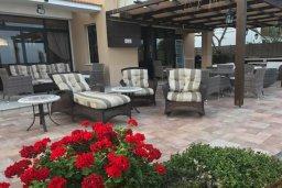 Территория. Кипр, Декелия - Ороклини : Роскошная пляжная вилла с зеленым двориком, патио, барбекю и джакузи, 4 спальни, 3 ванные комнаты, парковка, Wi-Fi