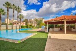 Бассейн. Кипр, Гермасойя Лимассол : Уютная студия в комплексе с бассейном и теннисным кортом