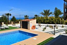 Бассейн. Кипр, Лачи : Современная вилла в 100 метрах от пляжа с бассейном, 4 спальни, 3 ванные комнаты, парковка, Wi-Fi