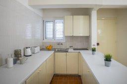 Кухня. Кипр, Центр Айя Напы : Комфортабельный апартамент с гостиной, двумя спальнями и балконом, расположен в самом центре Айя-Напы