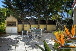 Территория. Кипр, Нисси Бич : Комфортабельная вилла с 2 спальнями, с бассейном с водопадом, зелёным садом, тенистой террасой с патио и каменным барбекю