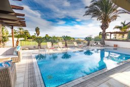 Бассейн. Кипр, Каппарис : Роскошная вилла с бассейном в 100 метрах от пляжа, 4 спальни, 3 ванные комнаты, патио, барбекю, парковка, Wi-Fi