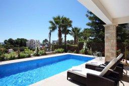 Бассейн. Кипр, Хлорака : Прекрасная вилла с бассейном и зеленым двориком с барбекю, 100 метров до пляжа, 3 спальни, 3 ванные комнаты, парковка, Wi-Fi