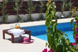 Бассейн. Кипр, Хлорака : Прекрасная вилла с бассейном и зеленым двориком с барбекю, терраса на крыше с видом на море, 3 спальни, 2 ванные комнаты, парковка, Wi-Fi