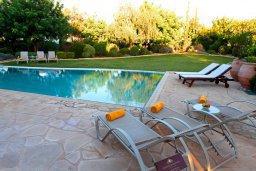 Бассейн. Кипр, Афродита Хиллз : Роскошная вилла с бассейном и зеленым двориком с барбекю, 5 спальни, 5 ванных комнат, парковка, Wi-Fi
