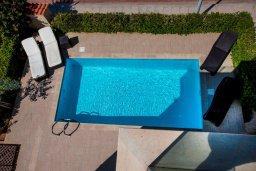 Бассейн. Кипр, Хлорака : Роскошная вилла с бассейном и зеленым двориком с барбекю, 3 спальни, 2 ванные комнаты, парковка, Wi-Fi