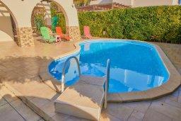 Бассейн. Кипр, Пейя : Прекрасная вилла с бассейном и приватным двориком, 3 спальни, 2 ванные комнаты, парковка, Wi-Fi
