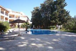 Бассейн. Кипр, Пафос город : Апартамент в комплексе с бассейном, с гостиной, отдельной спальней и большим балконом
