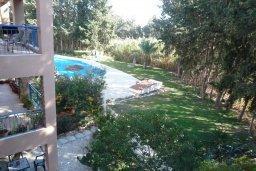 Территория. Кипр, Пафос город : Апартамент в комплексе с бассейном, с гостиной, отдельной спальней и большим балконом