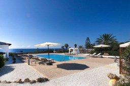 Бассейн. Кипр, Пейя : Роскошная вилла с фантастическим видом на Средиземное море, с 4-мя спальнями, 4-мя ванными комнатами, бассейном, джакузи, бильярдом, патио, настольным теннисом, расположена на берегу моря