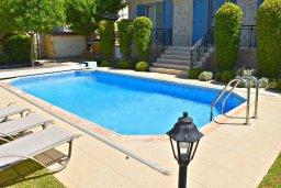 Бассейн. Кипр, Лачи : Роскошная вилла с бассейном и зеленым двориком с барбекю, 4 спальни, 3 ванные комнаты, парковка, Wi-Fi