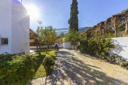 Территория. Кипр, Фиг Три Бэй Протарас : Очаровательная вилла с 5-ю спальнями, 2-мя ванными комнатами, приватным зелёным садом, тенистой террасой с патио и традиционной кипрской печью