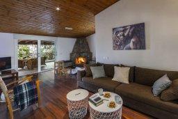 Гостиная. Кипр, Троодос : Современный традиционный коттедж с 3 спальнями, с приватным двориком с террасой и барбекю, расположен на горном курорте Platres
