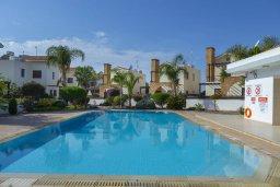 Бассейн. Кипр, Ионион - Айя Текла : Современная вилла с 2 спальнями, приватным двориком с патио и барбекю, расположена в тихом закрытом комплексе с бассейном