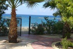 Территория. Кипр, Айос Тихонас Лимассол : Апартамент в 50 метрах от пляжа, с гостиной, отдельной спальней и балконом с видом на море