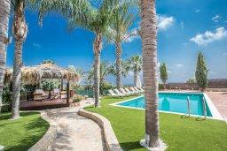 Территория. Кипр, Санрайз Протарас : Уютная вилла с бассейном и зеленым двориком с барбекю, 5 спален, 3 ванные комнаты, парковка, Wi-Fi