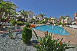 Бассейн. Кипр, Ионион - Айя Текла : Уютная вилла с 3-мя спальнями, 3-мя ванными комнатами, тенистой террасой с патио и барбекю, расположена в закрытом комплексе с бассейном