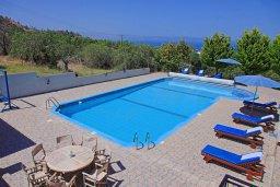 Бассейн. Кипр, Аргака : Роскошная уединенная кипрская вилла с панорамным видом на море, с 4-мя спальнями, с бассейном, в окружение зелёного сада, солнечной террасой с патио и барбекю, расположена в Agia Marina