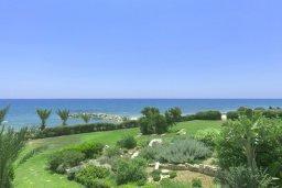 Территория. Кипр, Айос Теодорос : Роскошная вилла в 20 метрах от пляжа с большим бассейном и зеленой лужайкой, 7 спален, 6 ванных комнат, бильярд, барбекю, парковка, Wi-Fi