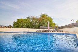 Бассейн. Кипр, Корал Бэй : Прекрасная вилла с бассейном и зеленым двориком с барбекю, 4 спальни, 2 ванные комнаты, джакузи, парковка, Wi-Fi