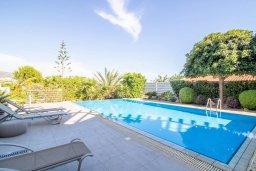 Бассейн. Кипр, Пейя : Роскошная вилла с видом на Средиземное море  и горы, с 4-мя спальнями, с бассейном в окружении пышного зелёного сада, тенистой террасой с патио и барбекю, расположена недалеко от пляжа Coral Bay Beach