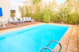 Бассейн. Кипр, Корал Бэй : Уютная вилла с видом на Средиземное море, с 4-мя спальнями, с бассейном в окружении зелёного сада, тенистой террасой с патио и барбекю, расположена недалеко от пляжа Corallia Bay Beach